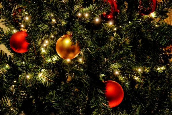 Check out holiday events at West Library