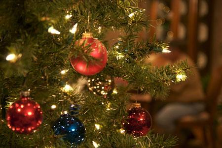 Hold on to your Santa hat - Christmas trees are coming to West Library