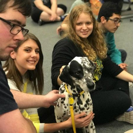 Canine Counselors Therapy Dogs